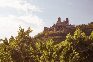 Weingut Hagmann Ausflug Ruine Senftenberg