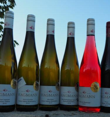 6 x GOLD für unsere Weine - Weingut Hagmann